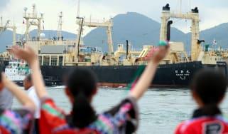 Japan, Whaling