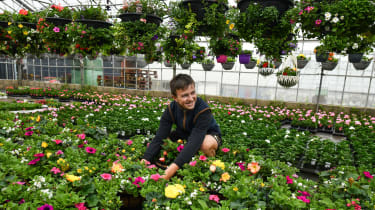 Garden centre staff member attends to plants