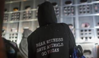 Animal rights, Vegan