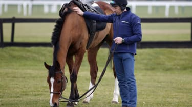 A horse finishes exercises in Cheltenham, UK