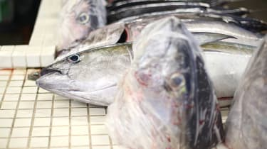 A man has been given free fish heads for life after rescuing four people