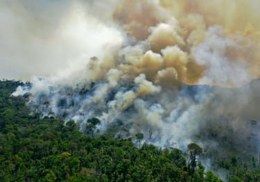 A burning area of Amazon rainforest reserve south of Novo Progresso in Para state