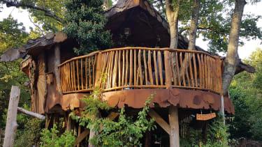 Piggledy Tree House