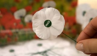 White Poppy, Remembrance, World War One