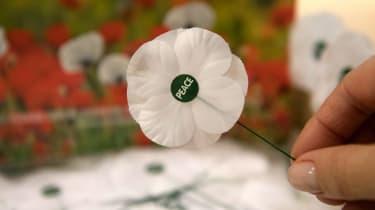 White Poppy, Remembrance, World War One