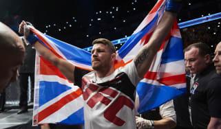 Michael Bisping George St-Pierre UFC 217