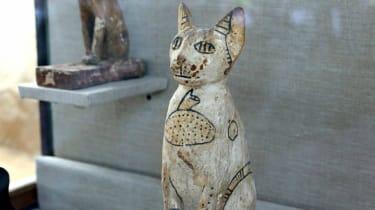 Mummy cats