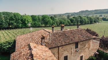 La Pusterla vineyard