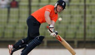 140320-cricket.jpg