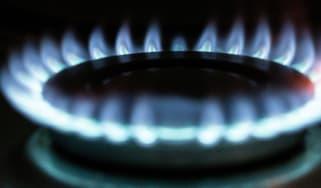 Gas hob flame