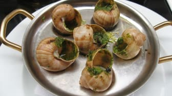Snails French food