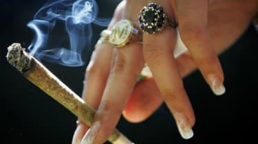 160616-wd-cannabis.jpg
