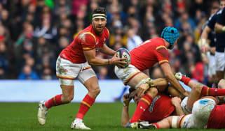 Rhys Webb Wales rugby