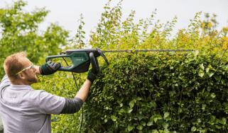 Bosch Advanced Hedge Cut AHS 70