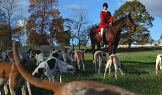 Fox hunting has been banned since 2004