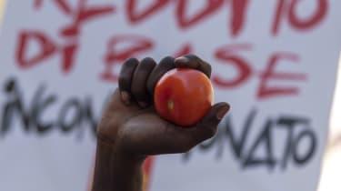 Tomato, Italy, Slave, Migrant