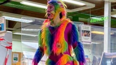 A rainbow monkey