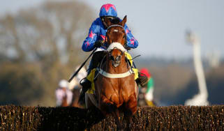 Cue Card, Paddy Brennam, Cheltenham Gold Cup