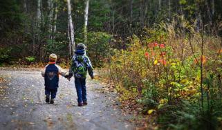 children_woods_forest.jpg