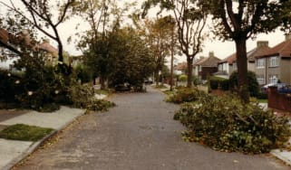 Fallen trees in Sidcup, Kent, after the Great Storm of 1987