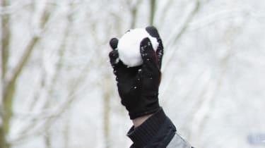 snowball.jpg