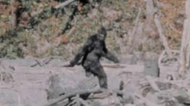 310718-wd-bigfoot-walking.jpg