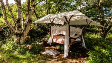 Midsummer Meadow Bed
