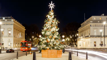 A large Christmas tree in the middle of Waterloo Place in London at night, with traffic passing by