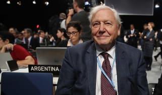 Sir David Attenborough at the COP24 UN climate summit in Poland