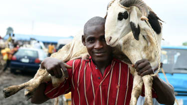 A man carries a ram bought to celebrate Eid al-Adha at the market in Kara, in the state of Ogun, on September 23, 2015.Nigeria imposed tight movement restrictions in the restive northeast aft