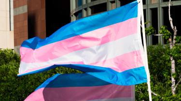 The transgender flag