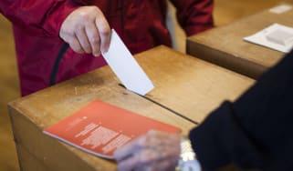 Swiss voter
