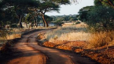 Road through Tarangire National Park