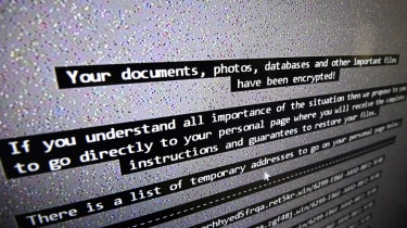 Cybercrime rehab