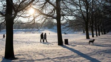 Winter walks in London