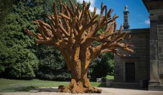 Ai Weiwei, Iron Tree