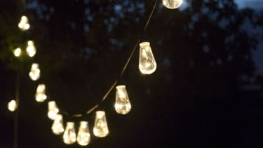 Squirrel Festoon lights