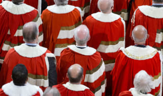 Peers in House of Lords