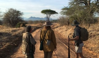 walking_safaris.jpg