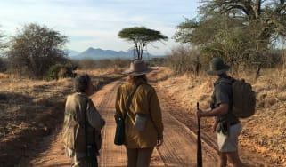 walking_safaris.jpg