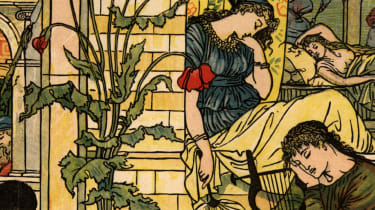 Sleeping Beauty from the fairy tale by the brothers Grimm.