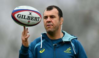 Michael Cheika Australia head coach rugby union