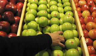 BEIJING - JANUARY 27:A shopper chooses granny smith apples at the newly-opened Tesco supermarket on January 27, 2007 in Beijing, China. The UK giant opened its first own-brand supermarket in