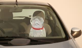 Dog in hot car, Tesla, Elon Musk
