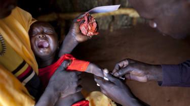 Malaria, Vaccine, Disease