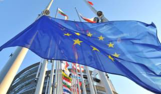 strasbourg-flags.jpg