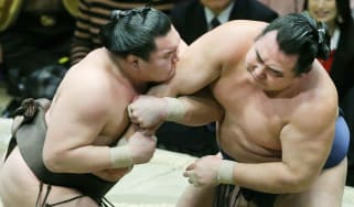 Sumo wrestling is Japan's national sport