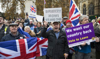 Pro-Brexit demonstrators protesting outside the Houses of Parliament
