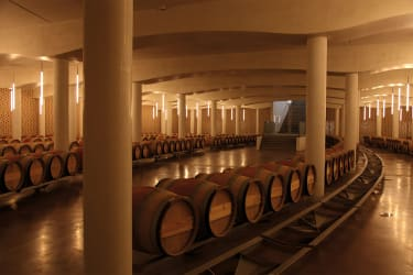 A vaulted, concrete wine cellar filled with barrels and lit by tube lights hanging down from the ceiling