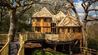 Fairytale treehouses